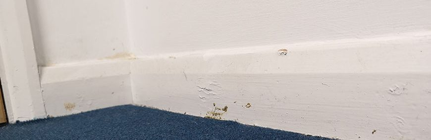 Removing and Refitting Skirting Boards